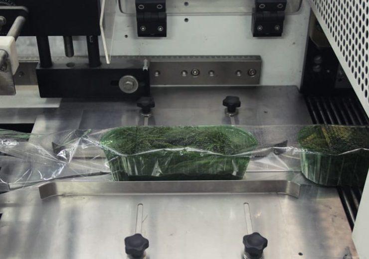 Упаковка зелени на оборудовании